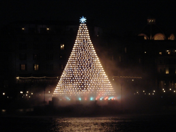 the Christmas tree is located in the center of Mediterranean Harbor